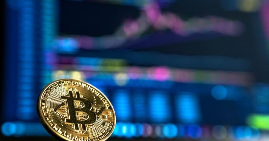 Anfängerleitfaden für das Glücksspiel mit Kryptowährungen